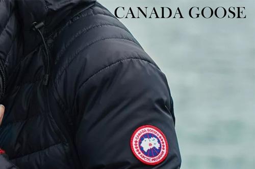 カナダグースアイコン