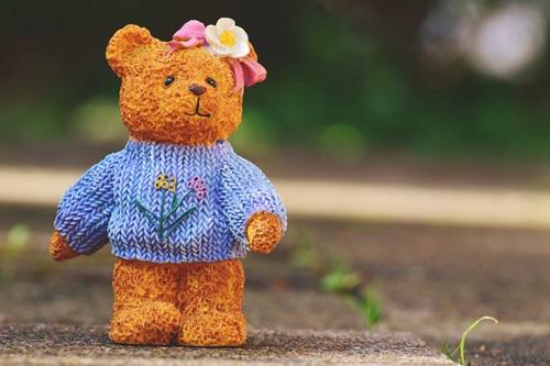 bears-974462_960_720